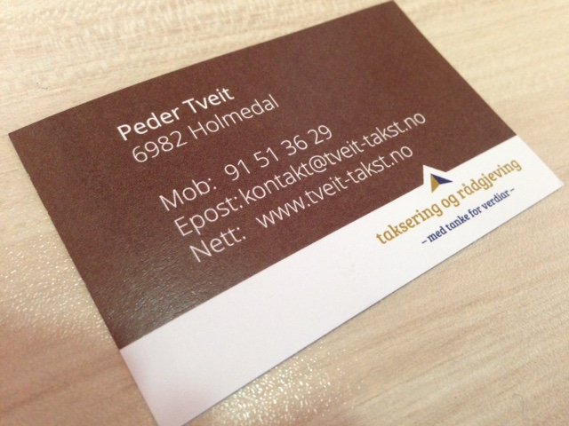 350 gsm matt paper, printed 4+4 offset with double-sided matt soft-touch laminate. Size: 9 x 5 cm