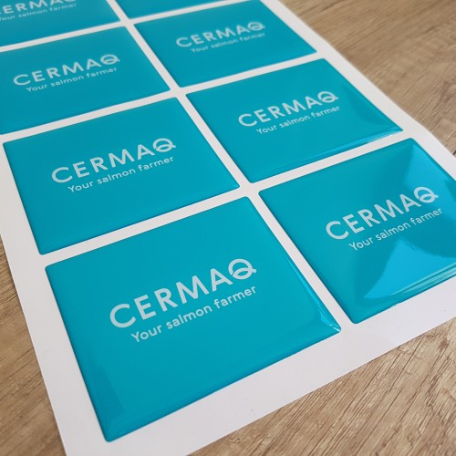 White foil + doming gel, printed CMYK. Size: 78 x 63.5 mm